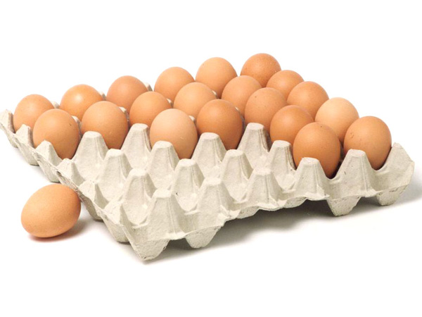paper egg trays